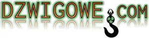 dzwigowe.com